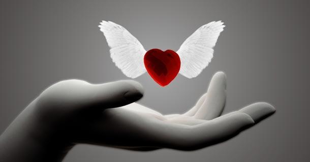 женское здоровье, сердце, здоровое сердце