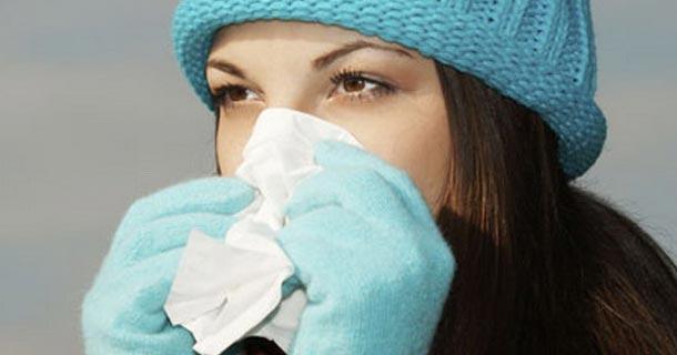 лекарства от простуды, женский сайт, женское здоровье, эхинацея, женьшень
