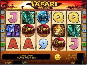 safari_heat_3(1)