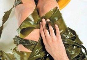 seaweed-wraps