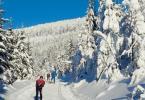 Как провести время на горнолыжном курорте Ясна