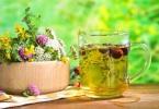 Лечение заболеваний травами: особенности
